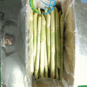 Packing-sugarcane