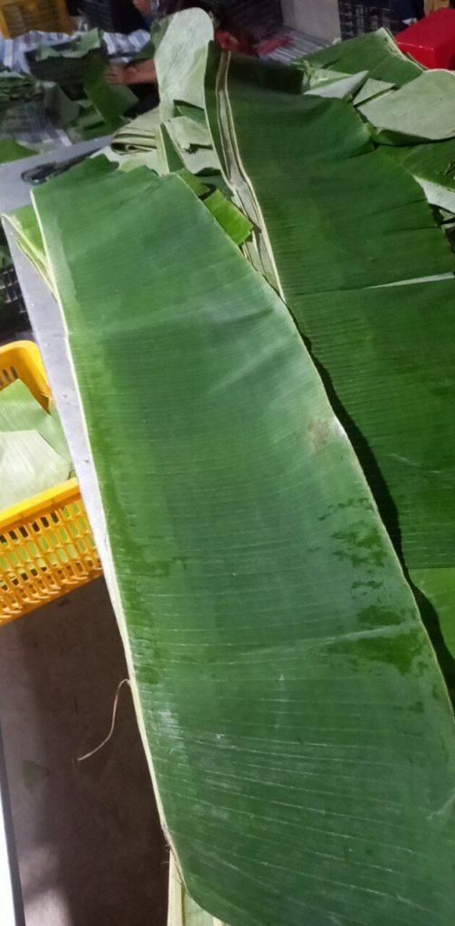 Fresh-banana-leaves-are-selected-carefully before producing frozen banana leaves